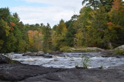 Few places captivate me like the banks of the Peshtigo River in Wisconsin